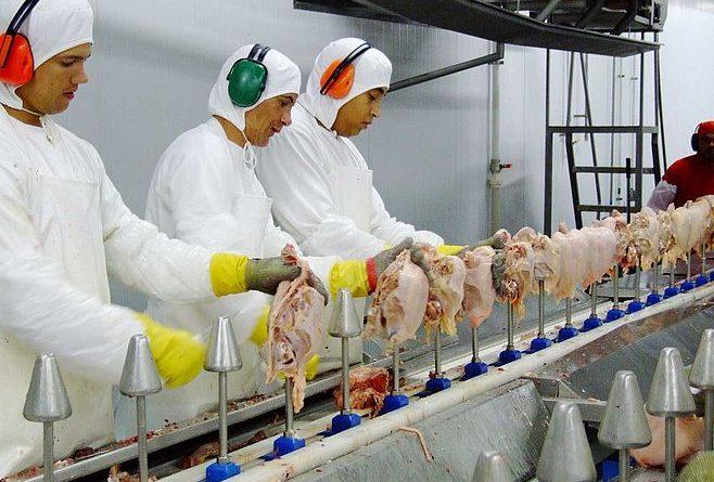 Anvisa proíbe em todo Brasil lote de peito de frango da marca D+ Alimentos